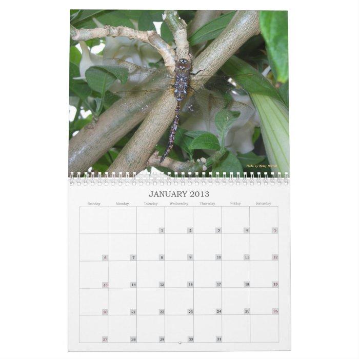 Garden Wonders Calendar 2013