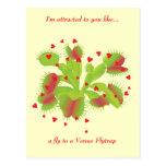 Gardener in Love Postcard