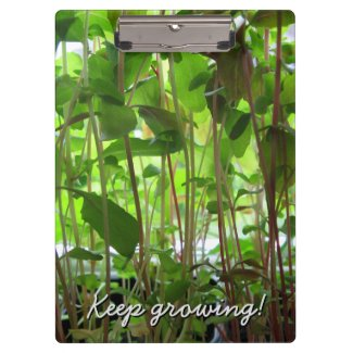 Gardener Keep Growing Plants
