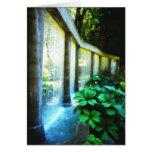 Gardener's Delight - Water Feature Card
