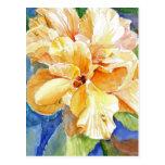 Gardenia amarillo grande tarjetas postales
