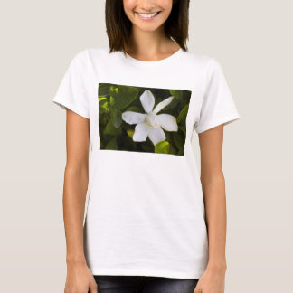 Gardenia blanco playera