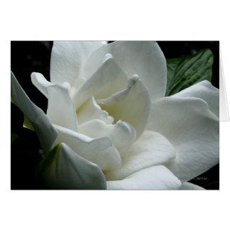 Gardenia Stationery Note Card