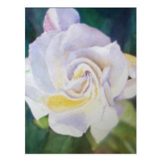 Gardenia color crema grande tarjetas postales