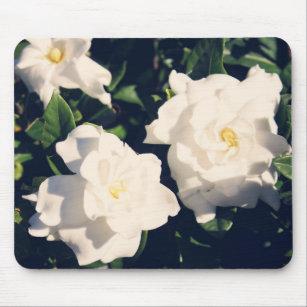 Gardenia flower electronics tech accessories zazzle gardenia flowers mouse pad mightylinksfo