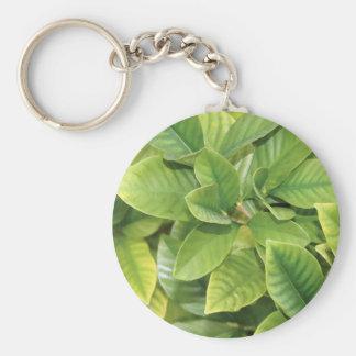 Gardenia Greens Keychain