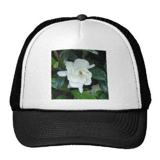 Gardenia Trucker Hat