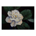 Gardenia Oil Painting Card