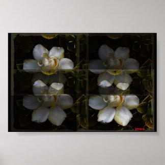Gardenia Panel Poster