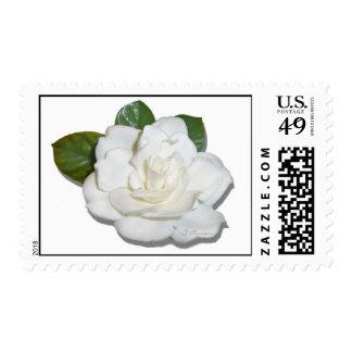 Gardenia Stamps