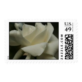 Gardenia postage