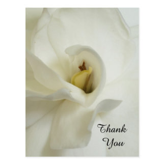 Gardenia Sympathy Thank You Postcard
