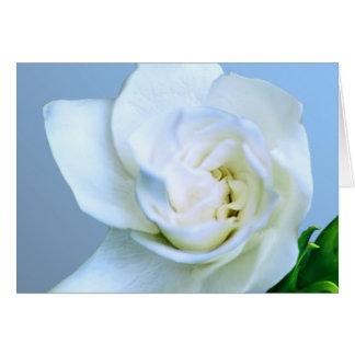 Gardenia Tarjeta De Felicitación