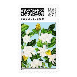 Gardenias con el cielo azul sello postal