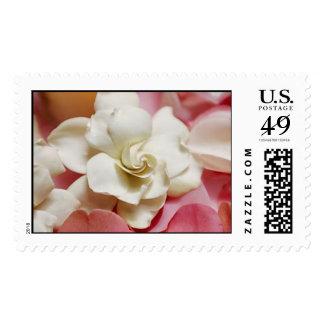 Gardenias Stamp