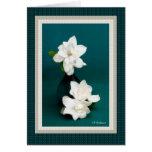 Gardenias & teal II Greeting Card