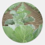 Gardening, Farming, Green Leaf Stickers