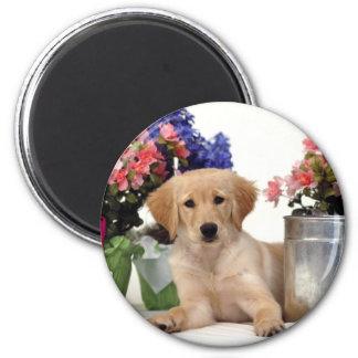 Gardening Golden Retriever Puppy Fridge Magnets