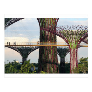 Gardens by the Bay Singapore eco park Postcard