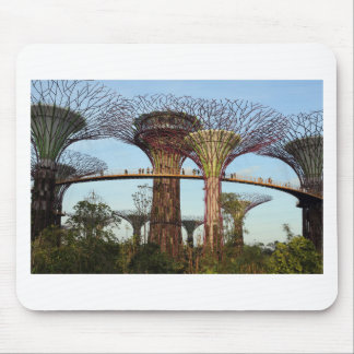 Gardens by the Bay Singapore environmental Mouse Pad