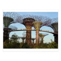 Gardens by the Bay Singapore environmental Postcard