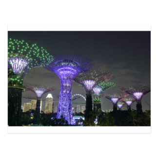Gardens by the Bay Supertree Grove light show Postcard