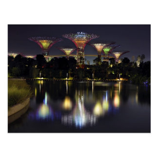 Gardens by the Bay Supertree Grove Postcard