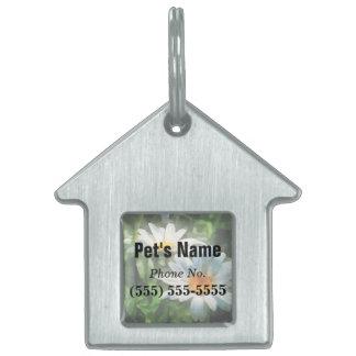 Gardens - Three White Daisies Pet Name Tags
