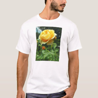 Gardens - Yellow Rose and Buds T-Shirt
