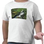 Garganta de la avalancha en Parque Nacional Camisetas