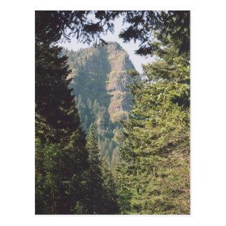 Garganta del río Columbia Tarjetas Postales
