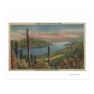 Garganta del río Columbia Postales