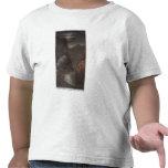 Garganta real, CO - opinión del claro de luna del  Camiseta