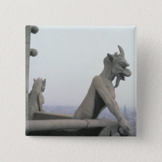 Gargoyle from the balustrade of the Grande Pinback Button