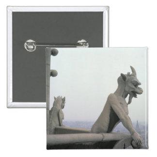 Gargoyle from the balustrade of the Grande Pinback Button
