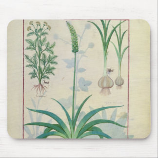 Garlic and other plants mouse pad