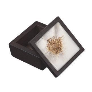 Garlic bulb gift box