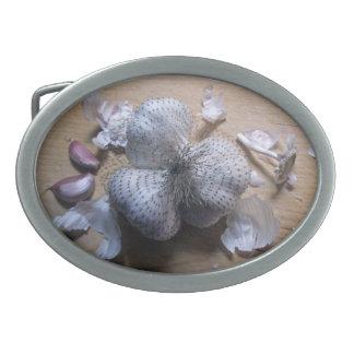 Garlic bulbs belt buckles