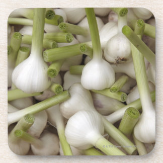 Garlic bulbs beverage coaster