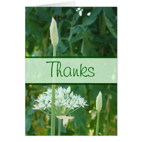Garlic Chives Banner card-customize any occasion Card