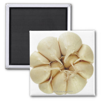 Garlic  isolated on white background, DFF image, Refrigerator Magnets