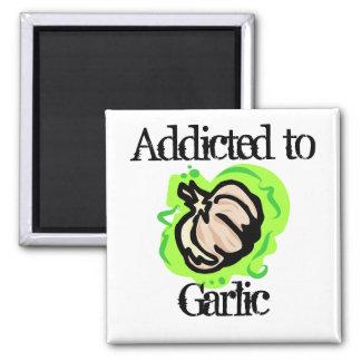 Garlic Fridge Magnet