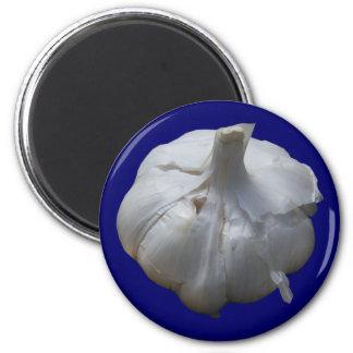 Garlic Fridge Magnets