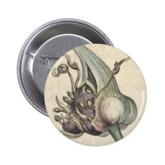 Garlic Pinback Button