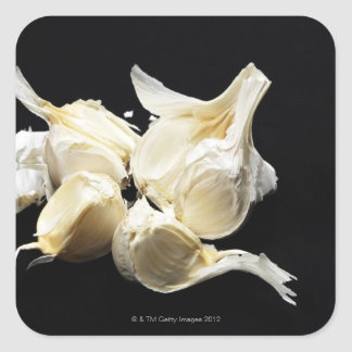 Garlic Square Sticker