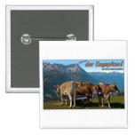 ¡Garmisch - hola del Zugspitze! Pin