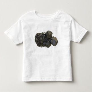 Garnet in Natural Form T Shirt
