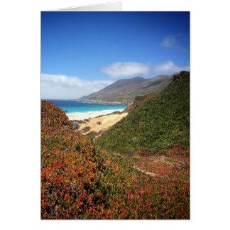 Garrapata Beach Card