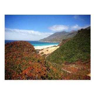 Garrapata Beach Postcard