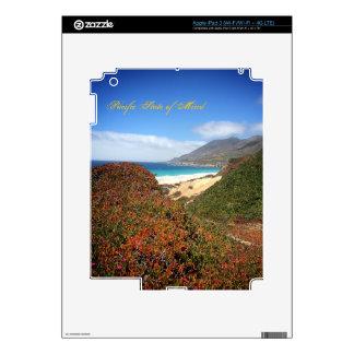 Garrapata Beach Skins For iPad 3